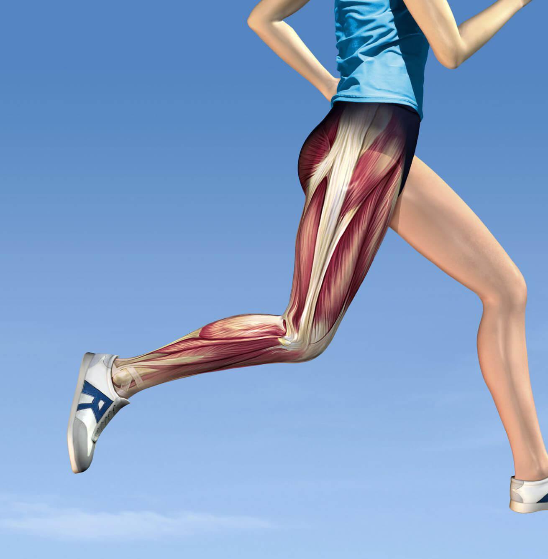 تاثیر افزایش قدرت و انعطاف عضلات پا در پیشگیری از درد زانو